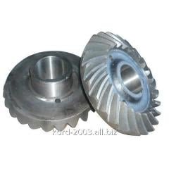 The gear wheel conducted conic the Urals-4320