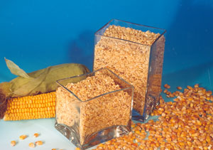 Премиксы для сельскохозяйственных животных,Зерно,