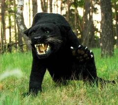 Effigy Panther