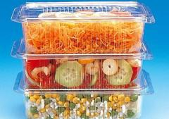 Containers for packing of cold dishes, an art.