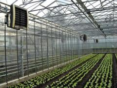 Heating of greenhouses, hen house, farms