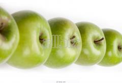 Apples Simirenko's grade to buy,