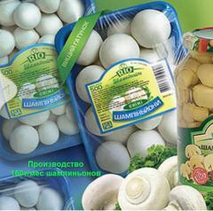 Шампиньоны оптом  от производителя,160т/мес