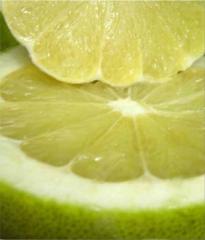 Помело (Citrus grandis) цена оптом Украина