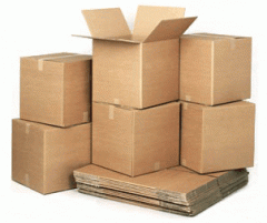 Cardboard box with a cover