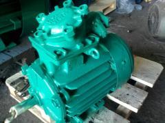 AIMM 22/1500 explosion-proof motors