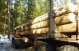 Манипулятор для погрузки леса