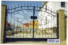 Gate shod transparent 14