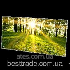 Инфракрасный стеклокерамический панельный обогреватель HGlass IGH 5010 фотопечать 500/250 Вт