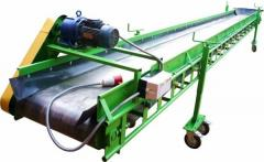 Conveyors are tape, conveyors scraper, shnekovy