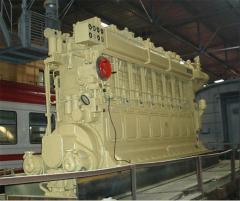 Ashkey of the pump of an internal contour 6 NVD 48