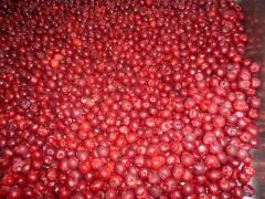 The frozen B\K Cherry. (Poland)