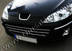 Grid in bumper nerzhv. Peugeot 407