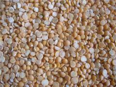 Grain split peas