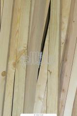 Lath pine