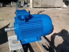 30 kW Motors 1500 rpm