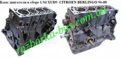 Блок двигателя в сборе 1.9D (XUD9) CitroenBerlingo