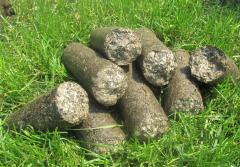 Biological fuel Briquettes from biomass