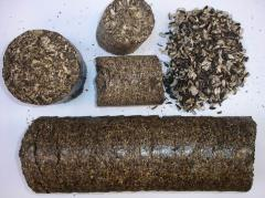 Biological fuel Briquettes sunflower pod