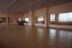 Зеркала для танцевальных студий