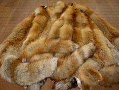 Furs of fox