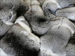Furs of chinchilla