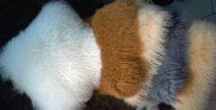 Шкуры калганской овцы