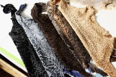 Fur broadtail