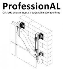 System of aluminum shapes and arms of ProfessionAL
