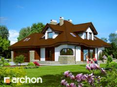 Project of the private house - The house in a