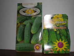 זרעי מלפפון