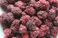 Dried blackberry