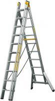 Ladder transformer 3 x 10 steps