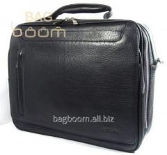 Bag - case with cover for the Astina (65062-5)