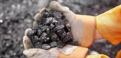 Sale of coal in Kiev it is cheap