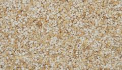 Barley Grits/barley grits
