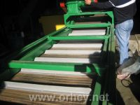 Blanshirovatel of conveyor type for vegetables