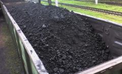 Продам вугілля вагонами Г та ЖР (0-200) зола 50%