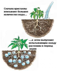 Hydrogel agrarian, a vlagouderzhivatel for