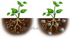 Гидрогель,  влагоудерживатель аграрный