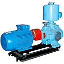 Vacuum pumps VVN, VVN1, 2NVR, AVZ