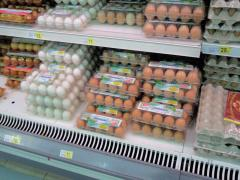 Упаковка для куриных яиц (ПЕТФ) 12 гнезд коричнеая