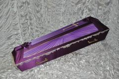 Coffin of a domovin Sun