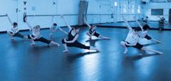 Vinyl floor scenic dancing coverings