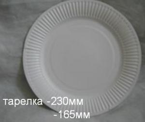 Disposable plates for hot and cold dishes