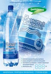Вода минеральная природная лечебно-столовая