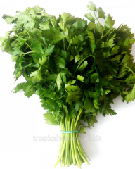 Parsley - Parsley
