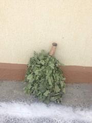 Bath brooms Canadian oak