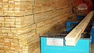 Wooden floor boards from pine - Ukraine. Laying