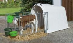 Lodge for calfs of Master Plus with a fencing